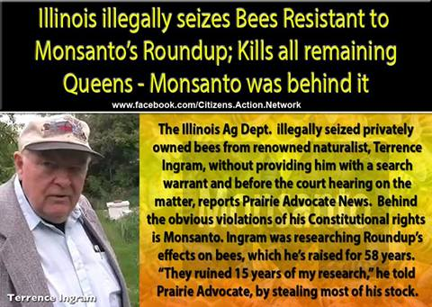 government helps monsanto wipe out bee population