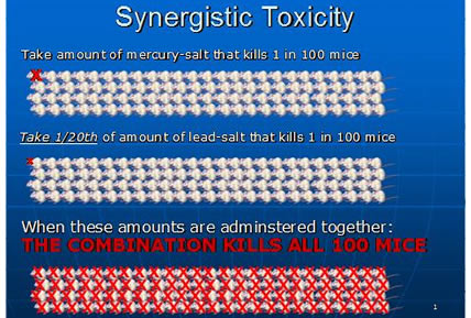 synergistic toxicity baby immunizations vaccines